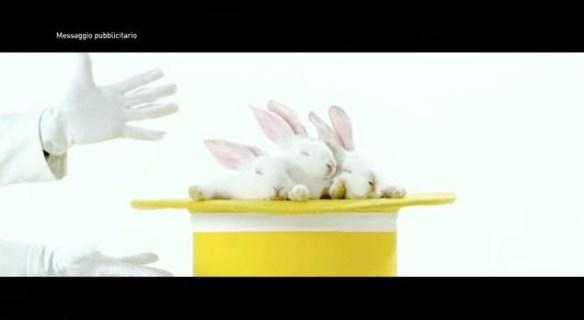 I conigli escono dal cilindro