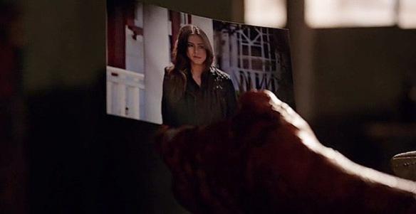 Il padre di Skye tiene in mano la foto
