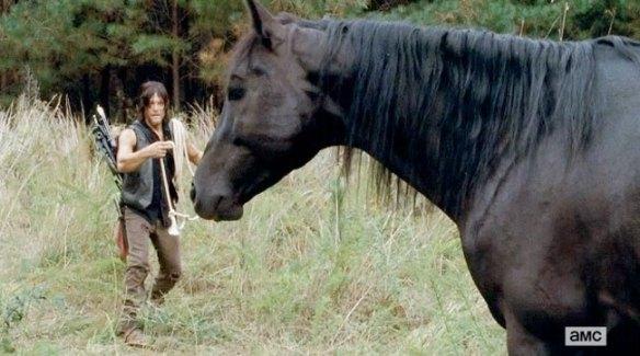 Daryl e il cavallo