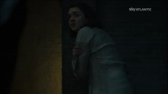 Arya frustata
